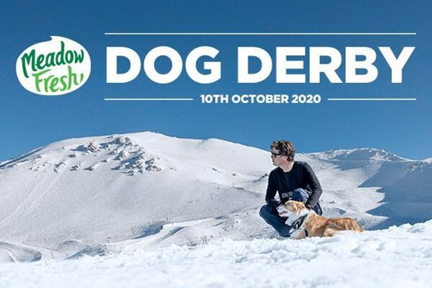 Picture of Mt Hutt Dog Derby